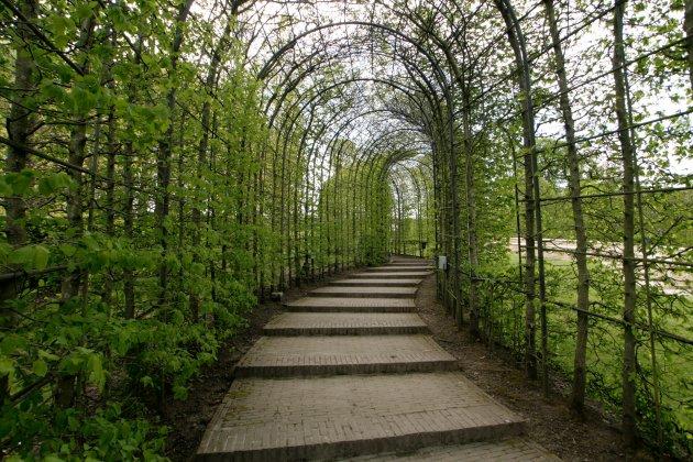Alnwick-castle- -gardens- 10