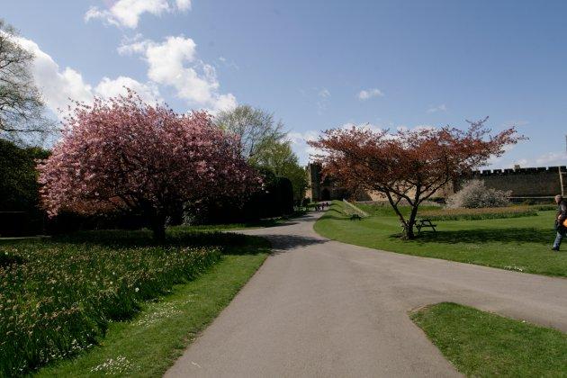 Alnwick-castle- -gardens- 11