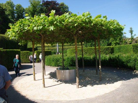 Alnwick-castle- -gardens- 12