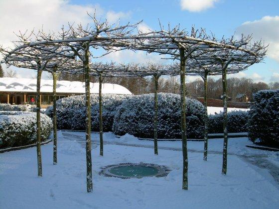 Alnwick-castle- -gardens- 6