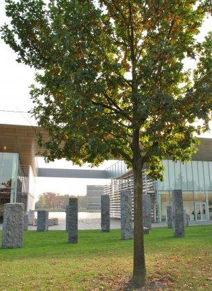 High-tech-campus- 2