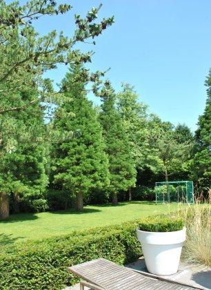 Privetuin-met-grote-bomen- 11