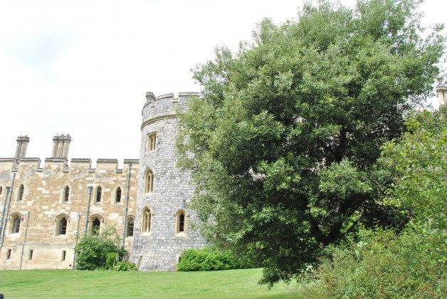 Windsor-castle- 3